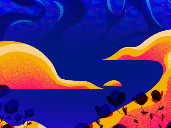 collines-version-web